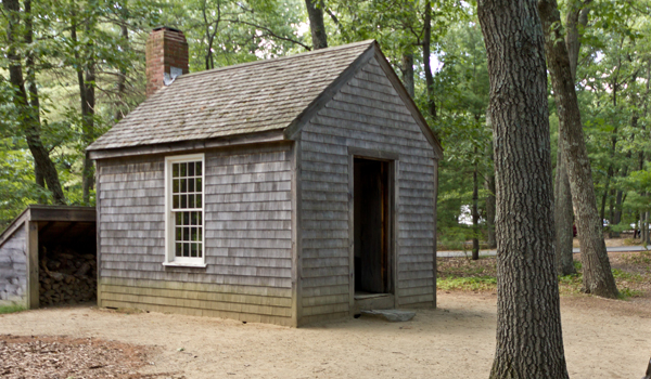 Pure housing / Thoreau's cabin